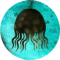 DropIt Icon